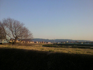 2012_03140007