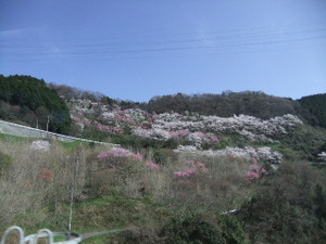 2012_0413ob0011