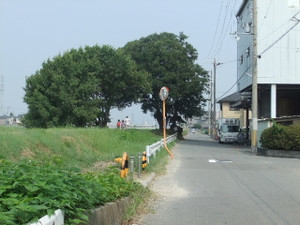 2012_07290008