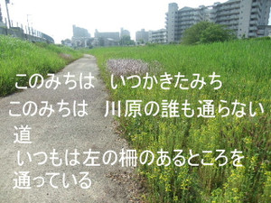 2013_05220006