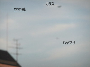2013_07120064