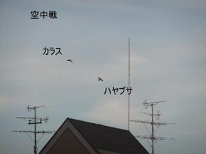 2013_07120065