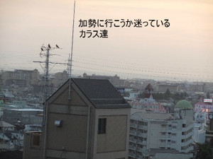 2013_07120072